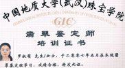 certificate003_GIC