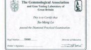 certificate015-FGA1